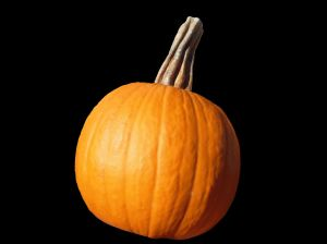 Vegetable_pumpkin